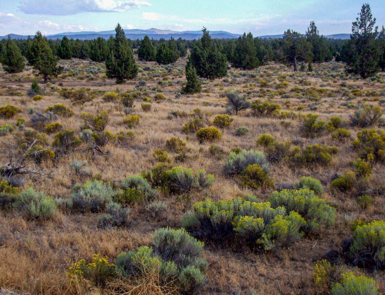 Oregon Badlands - Top 10 Central Oregon Winter Hikes