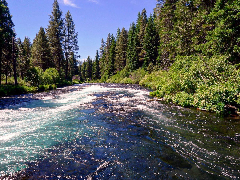 Metolius River Trail - Top 50 Central Oregon Winter Hikes