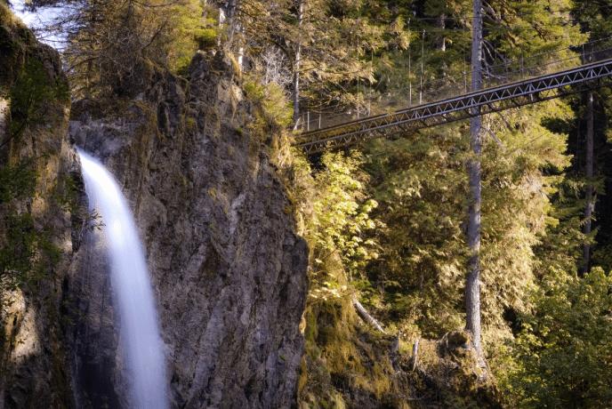 Drift Creek Falls Trail Near Lincoln City Oregon