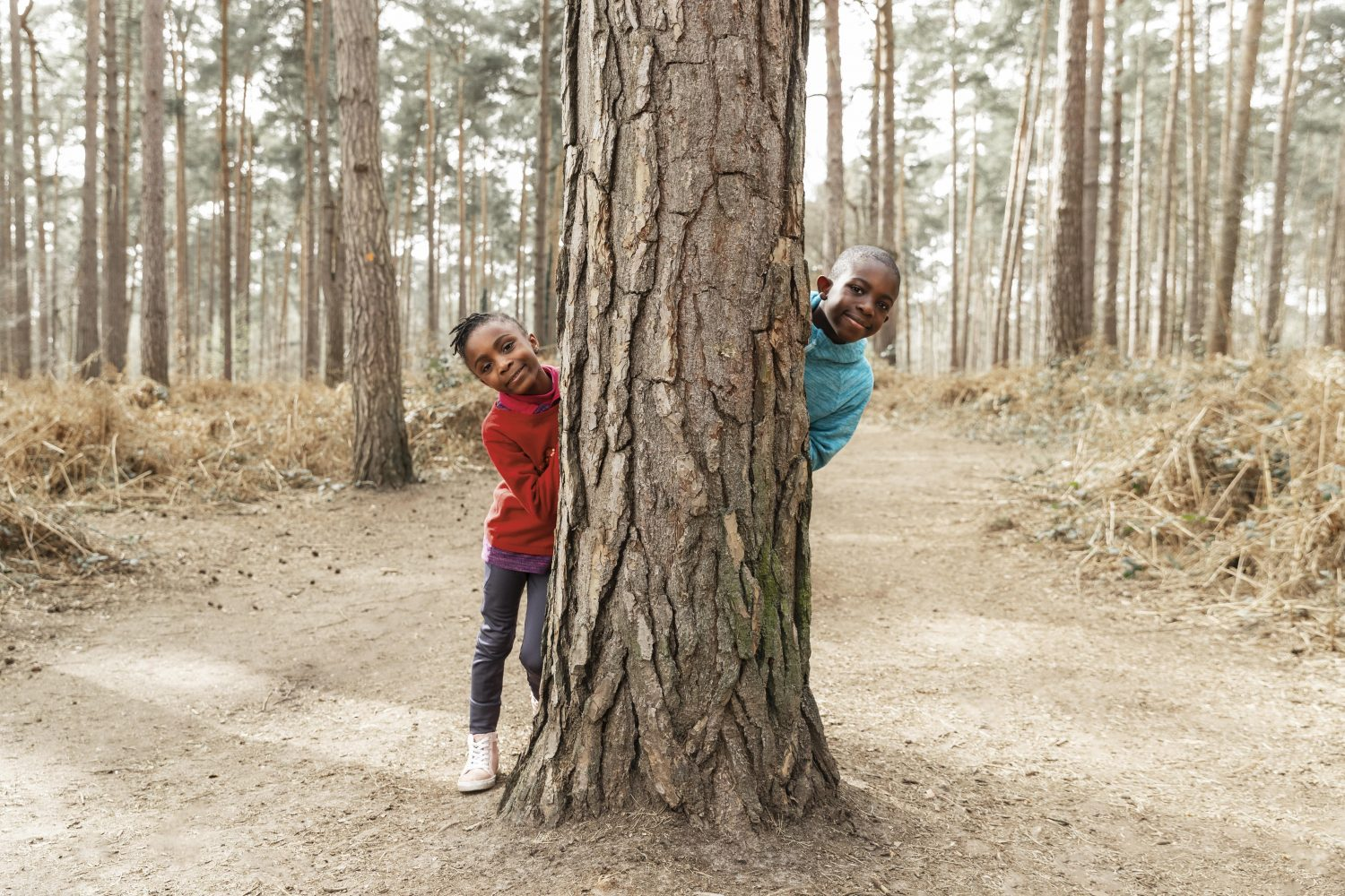 Two children peek out from behind a tree while playing hide and seek in the woods