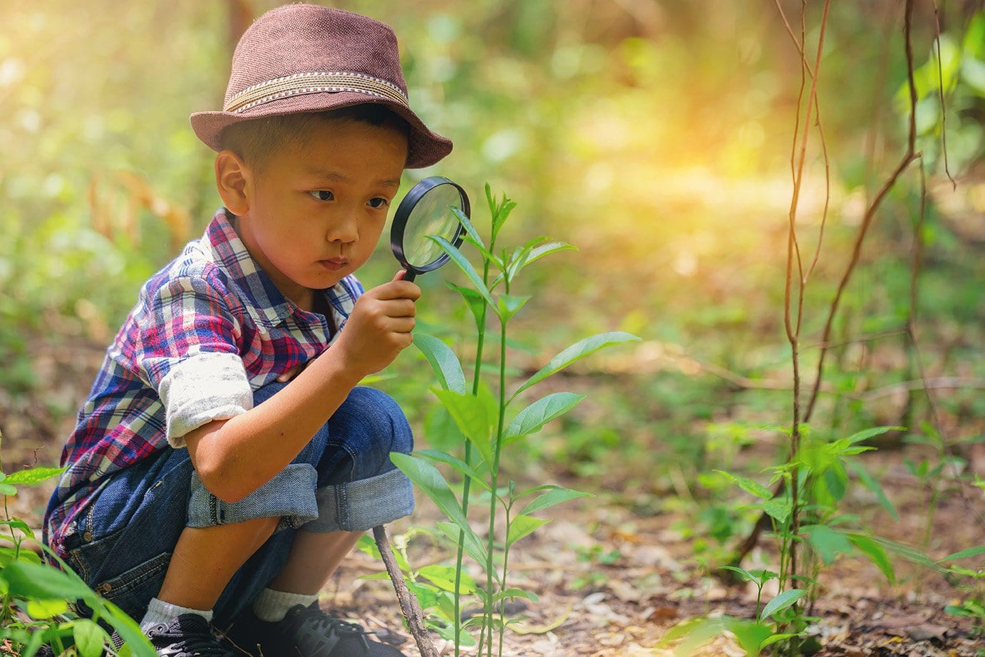 Happy little boy with magnifying glass explorer and learning the